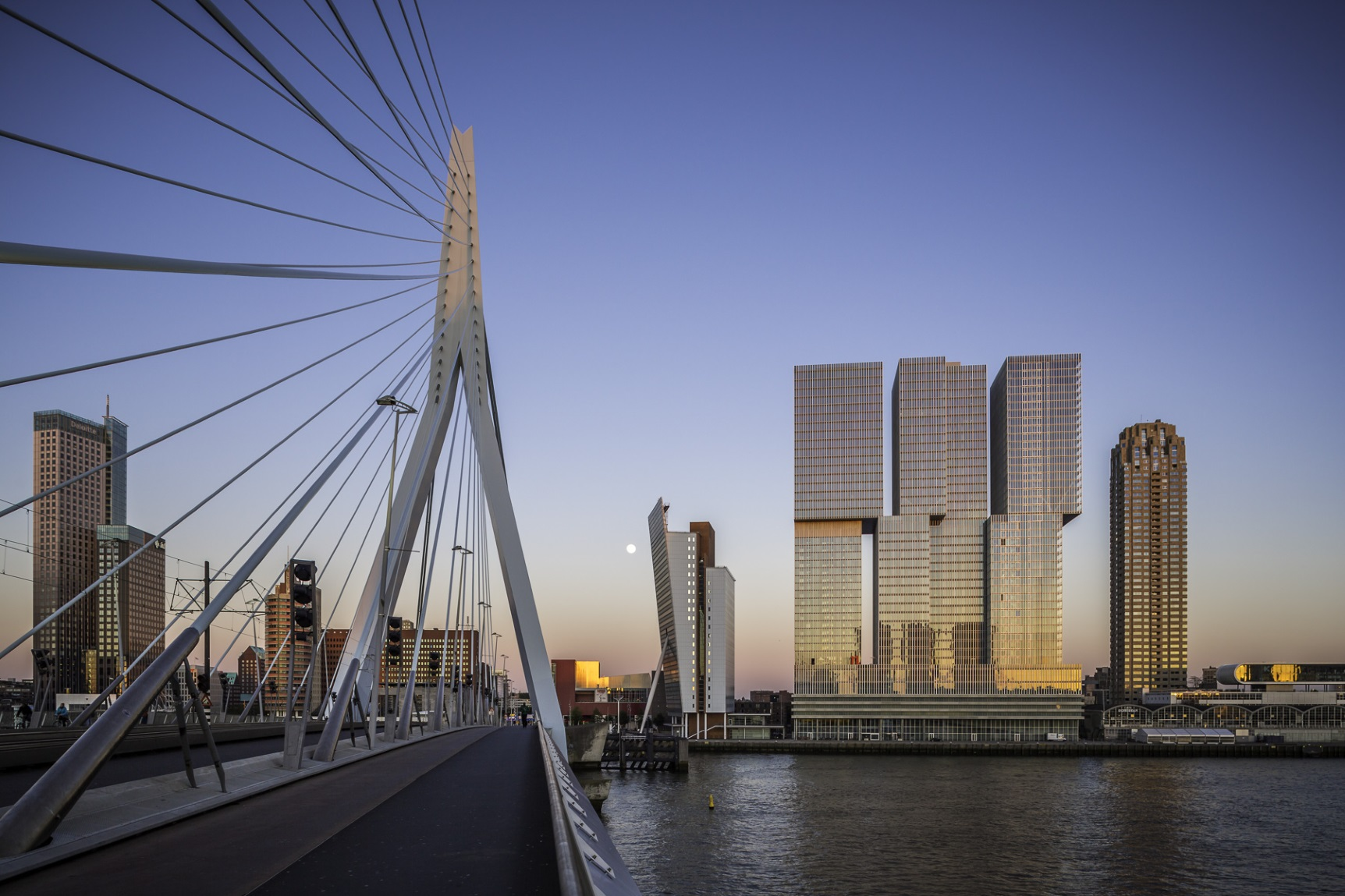 rotterdam-skyline-from-erasmus-bridge-mabry-campbell-lr